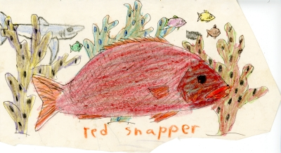 1984-09-28-red-snapper